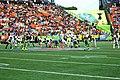 2014 Pro Bowl 140126-A-RV513-298.jpg