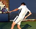 2014 US Open (Tennis) - Tournament - Michael Llodra (15129810705).jpg