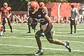 2016 Cleveland Browns Training Camp (28407763180).jpg