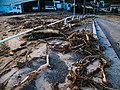 2018 Western Japan flood damage Hiroshima prefecture P7096757 (28427786177).jpg