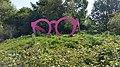2020 Giant pink glasses (1).jpg