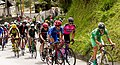 4 Etapa-Vuelta a Colombia 2018-Ciclistas en el Peloton 2.jpg