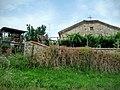 6571 Kamilski Dol, Bulgaria - panoramio (26).jpg