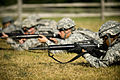 81st Troop Command military police fire grenade launchers 120621-Z-MG757-002.jpg