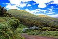 Açores 2010-07-19 (5055070860).jpg