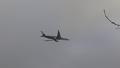 A350 CarbonFiberFF.png