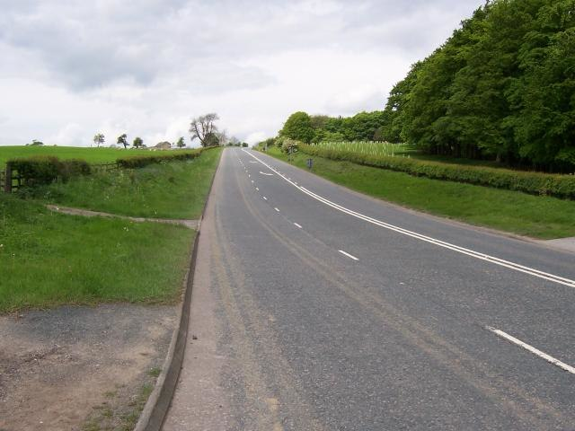 A59 road, The Long Causeway - geograph.org.uk - 441011
