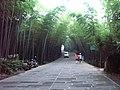 A6 蜀南竹海 翡翠长廊 liuzusai - panoramio.jpg