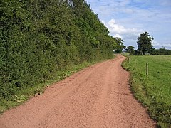 A Red Track in Cheshire - geograph.org.uk - 538821.jpg
