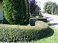 A Zöld kígyó. - panoramio.jpg