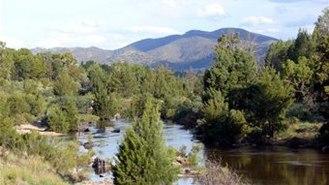 Pine Island Reserve - Image: A shot of Pine Island reserve 2014 04 14 22 58