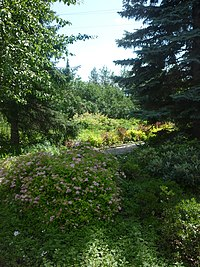A view in the Yekaterinburg's botanical garden.jpg