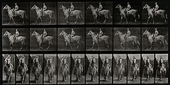A woman riding sidesaddle. Photogravure after Eadweard Muybr Wellcome V0048733.jpg