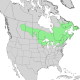 Abies balsamea range map 1.png