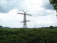Branch tower