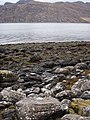 Across Little Loch Broom - geograph.org.uk - 1183181.jpg