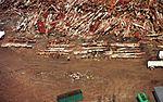 Aerial views of Ground Zero and Fresh Kills Landfill 011003-Z-AL508-006.jpg
