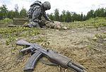 Alaska cavalry unit conducts dismounted live-fire exercise 130619-F-QT695-037.jpg