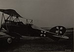 Albatros C.IX.jpg