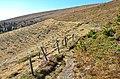 Albeck Seebachern Neuwirtalm N-Grenze 25102013 378.jpg