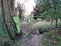 All Saints Church - footpath through churchyard - geograph.org.uk - 1614143.jpg