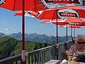 Allgäuer Alpen - panoramio (5).jpg