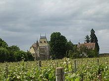 Aloxe-Corton, vignoble