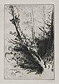 Alphonse Legros - In the Woods - 1920.551 - Cleveland Museum of Art.jpg