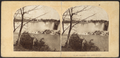 American Fall, Niagara, from Robert N. Dennis collection of stereoscopic views.png