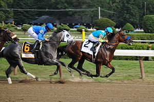 American Pharoah -  American Pharoah led Frosted for much of the run in the Travers Stakes.