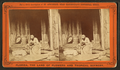 An Hour's search; or, Aunt Venue hunting for Florida fleas, from Robert N. Dennis collection of stereoscopic views 5.png