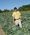 Andrew Ostrowski Brussel Sprout Garden.jpg
