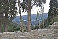 Andros island, Apikia village in the background.jpg