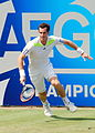 Andy Murray (14422543925).jpg