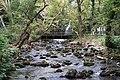 Angitis river near the source.jpg