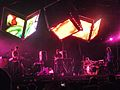 Animal Collective at Coachella 2011 (5677074182).jpg
