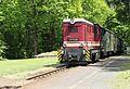 Ankunft des Zuges. Haltestelle Jonsdorf.2H1A9532WI.jpg