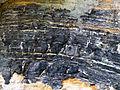 Anse Rouge argile noire Yprésis h 60 cm.jpg
