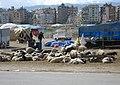 Antakya, Hatay province, Turkey - panoramio.jpg