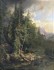 Aus den steirischen Gebirgswäldern bei Neuberg