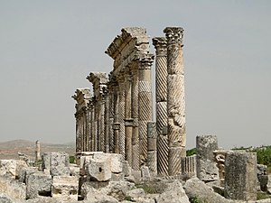 Great Colonnade at Apamea - Image: Apamea 22 Twisted fluted columns