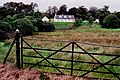 Ards Forest Peninsula - Scenes along road from Friary - geograph.org.uk - 1328782.jpg