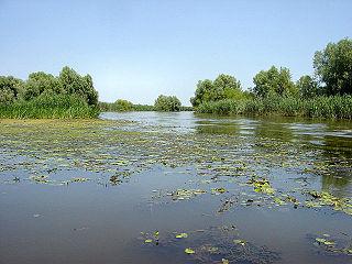 Astrakhan Nature Reserve