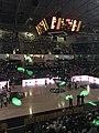 Asvel-Gravelines (Pro A basket-ball) - 2018-04-28 - 1.JPG