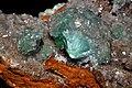 Auricalcite 1(Maroc).jpg