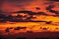 Autumn Clouds - Kolkata 2011-10-18 5868.JPG