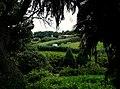 Azore Farm (26344604929).jpg