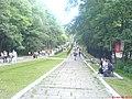 Bârlad, Romania - panoramio - Wyly (1).jpg