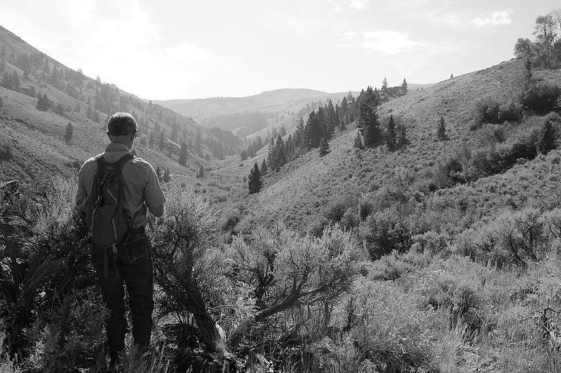 File:BLM Idaho State Director Tim Murphy in Jerry Peak Wilderness (23806969991).jpg
