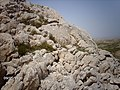 BLOKLU YAPI VE RENK ÇALIŞMALARIM RAKIM 2083M - panoramio.jpg